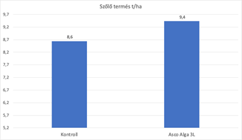Tagyon az Eurofins által 6 ismétlésben beállítva. A királyleányka szőlő július 9-én és július 25-én volt permetezve 600L lémennyiséggel. Az Asco Alga 3L/ha dózisban 0,8 t/ha plusz termést adott! Ez közel 100.000 Ft/ha plusz árbevétel kb. 10.000 Ft befektetéssel!